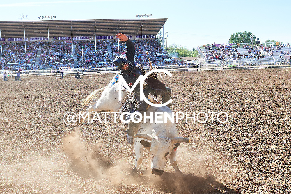 Tyler Bingham / P43 Hou's Bad News of Bridwell, Red Bluff 2019<br /> <br /> <br />   <br /> <br /> <br /> File shown may be an unedited low resolution version used as a proof only. All prints are 100% guaranteed for quality. Sizes 8x10+ come with a version for personal social media. I am currently not selling downloads for commercial/brand use.