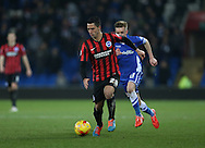 Beram Kayal, Brighton midfielder during the Sky Bet Championship match between Cardiff City and Brighton and Hove Albion at the Cardiff City Stadium, Cardiff, Wales on 10 February 2015.
