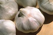 Close up selective focus photograph of Silverwhite Silverskin Softneck garlic bulbs