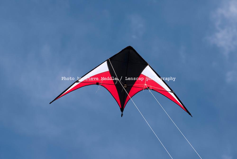 Stunt Kite Flying - 2010