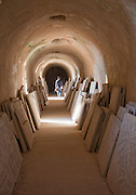 Roman ruins of an old Villa in Carthage, Tunisia