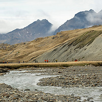 People hiking near Stromness. The Shackleton Hike leads from Fortuna Bay to Stromness on South Georgia Island.