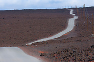 Narrow paved road through a lava field, Hilo, Hawaii.