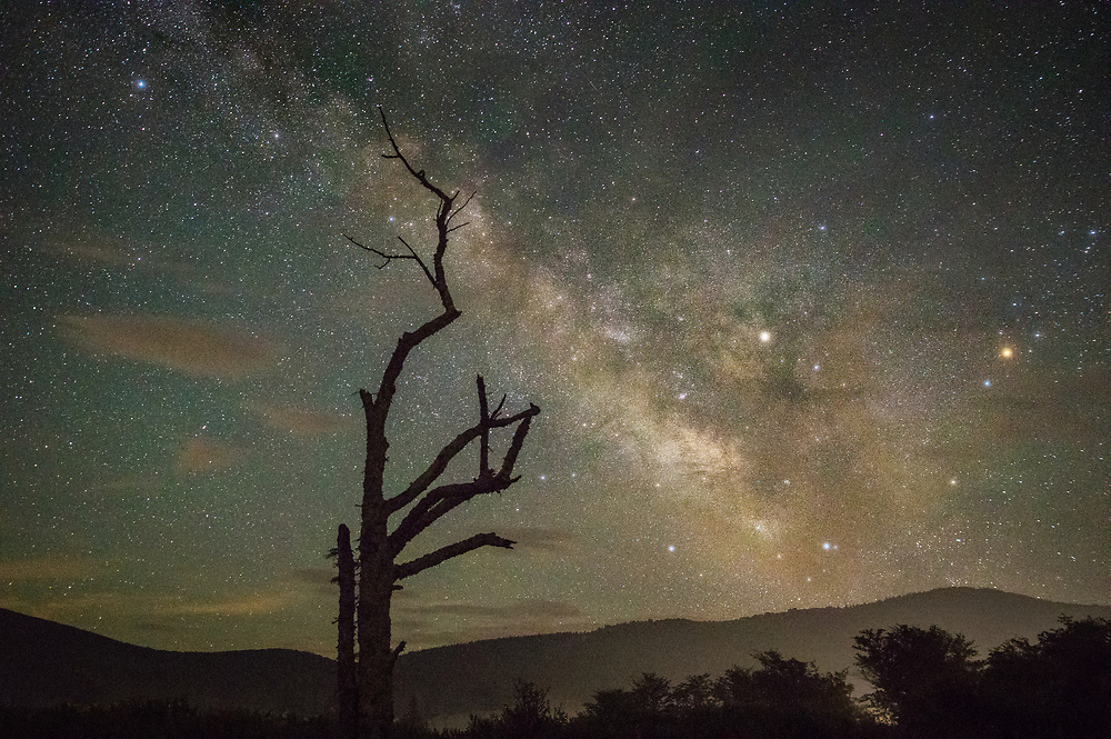 A bare hawthorn tree, silhouetted against the night sky and the mountains illuminated by a passing vehicle, appears to be pushing the Milky Way across the night sky tinged green by the atmospheric airglow in Canaan Valley of West Virginia.
