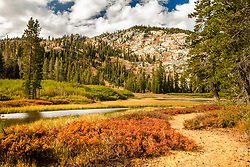 """""""Mud Lake Morning 3"""" - Photograph shot in the early morning of Mud Lake in California's Plumas National Forest."""