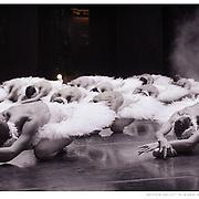 Boston Ballet corps dancers in Mikko Nissinen's 'Swan Lake'