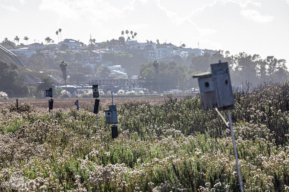 Birdhouses in Ballona Wetlands, Playa Del Rey, Los Angeles, California, USA