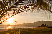 Building by sea at sunrise with leaves in foreground, Bolonia, Andalusia, Spain