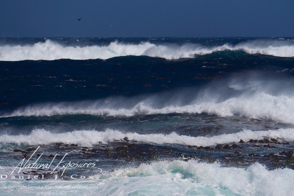 A massive surf pounds the shores of Cape Good Hope at Table Mountain National Park, South Africa.