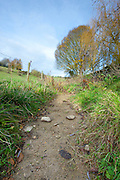 Dry weather causes Cotswolds stream to dry up, Swinbrook, Oxfordshire, UK