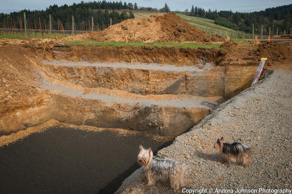 Saffron Fields groundbreaking home, Yamhill-Carlton Ava, Willamette Valley, Oregon