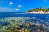 Cheeca Resort & Lodge, Islamorada, Florida Keys, Florida USA