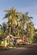 Houses and coconut palm, Red Island Beach, Red Island, Banyuwangi Regency, East Java, Indonesia, Southeast Asia