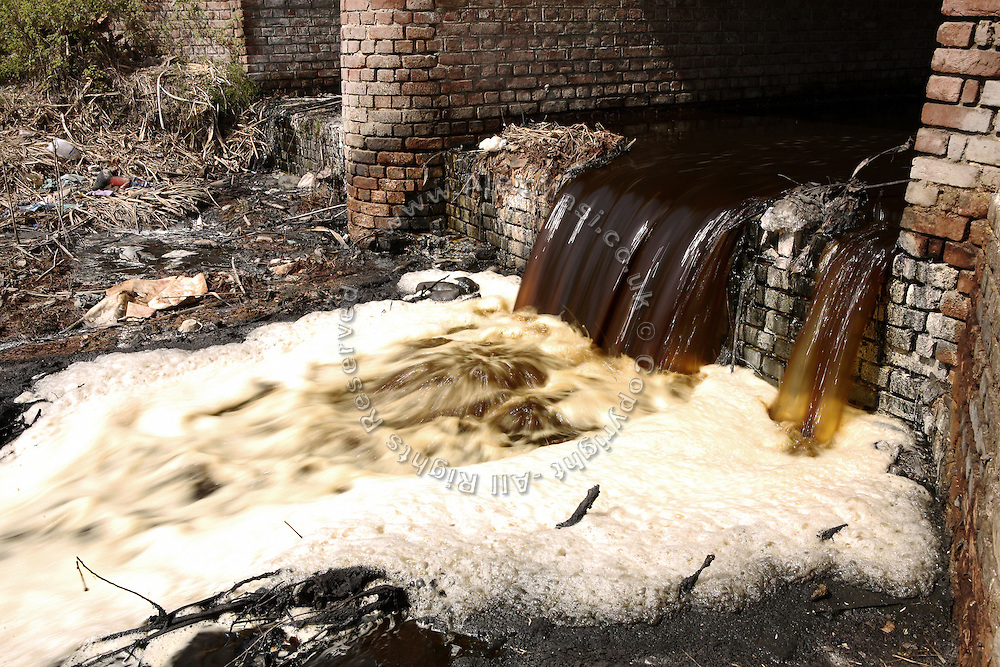 Contaminated water belonging to a drain passing through the village of Bhanera Khemchand, pop. 2000, Saharanpur District, Uttar Pradesh, India, is photographed flowing unabated under a local bridge, on Wednesday, Mar. 26, 2008.