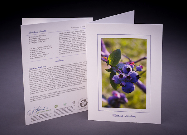 Lovely to look at and yummy to eat!  Includes one of my favorite seasonal recipes and some interesting facts about blueberries. <br /> <br /> Artemis Photo Greeting Cards featuring NH native flora and fauna and historic sites. The cards are made exclusively in NH made from 100% FSC recycled paper, manufactured with wind and water power, and are archival acid free paper. Each card includes details on the back about the image, including interesting anecdotes, historic facts, conservation status, and recipes.