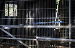 © Licensed to London News Pictures. 11/08/2020. Bisley, UK. A barn is cordoned off as investigators search an area at Priest Lane Farm near Bisley in Surrey as part of an historic murder investigation. Surrey Police, supported by the British Army and specialist forensic teams are carrying out a dig in relation to the murder of Tina Baker, 41, in 2002. Tina was initially reported missing after last being seen in Sunbury on 8 July 2002 but the investigation became a murder enquiry in October 2002. In 2005, following an extensive investigation by the Surrey and Sussex Major Crime Team, Tina's husband, Martin Gerald Baker, was arrested and charged with her murder. In 2006, he was sentenced to 14 years behind bars. Tina's body was never recovered. Following the conviction, enquiries continued by Surrey Police in order to find out what happened to Tina Baker's body. Information received has resulted in the decision to carry out forensic investigations in Bisley. Photo credit: Peter Macdiarmid/LNP
