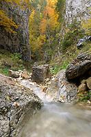 Valea Prapastiilor, National Park Piatra Craiului, Transylvania, Southern Carpathians, Romania