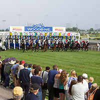 Thoroughbred Racing - Breeders Stakes 2011