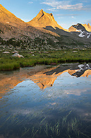 Nylon Peak reflected in pond near Lee Lake, Bridger Wilderness. Wind River Range, Wyoming