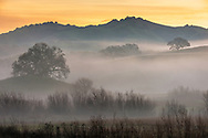 Morning mist from ground radiation fog in the Alhambra Valley, Contra Costa County, California
