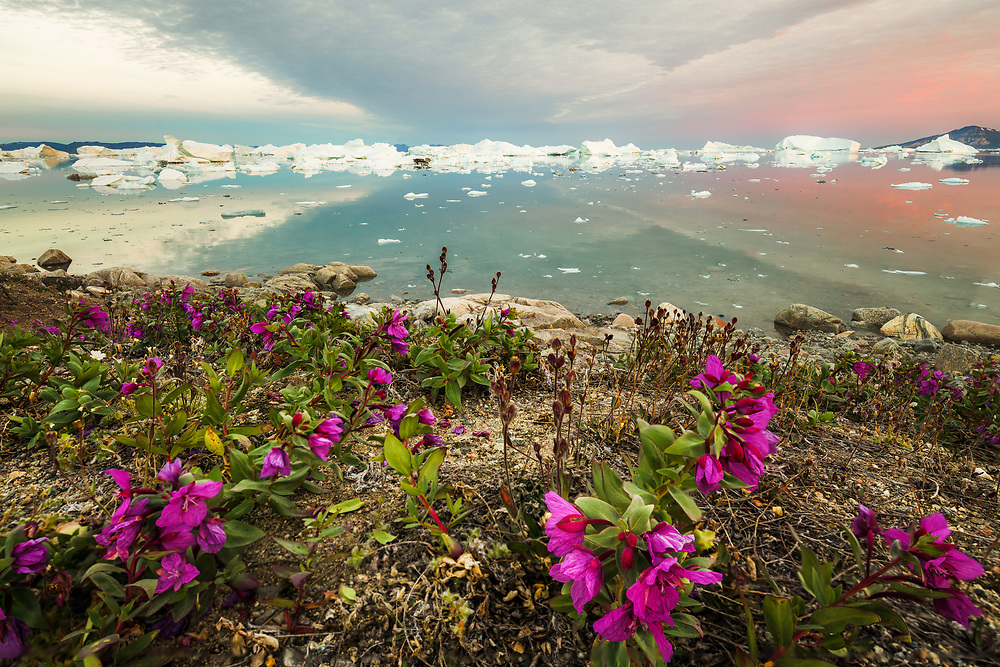 For me it was an amazing experience to have icy landscape change with all the tights and winds. Every morning, after getting out of your tent, the horizon with icebergs had been changed and there is something different to look at, even you had not move at all.