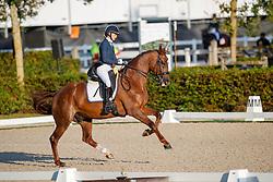 Dijkstra Devenda, NED, Hero<br /> Nederlands Kampioenschap dressuur<br /> Ermelo 2020<br /> © Hippo Foto - Sharon Vandeput<br /> 20/09/2020