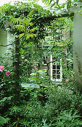 Use of a wall mounted mirror in a tiny courtyard garden.