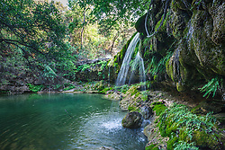 Little Bee Creek, Los Madrones Ranch in the Hill Country, Texas, USA.