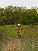 Prescribed prairie burn at the University of Wisconsin Arboretum, Curtis Prairie, Madison, Wisconsin
