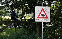 HENGELO (GLD) - verkeersbord , pas op met oversteken. golfbaan 't Zelle . COPYRIGHT KOEN SUYK