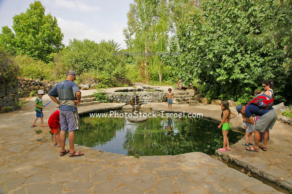 Eden Park, Golan Heights, Israel. Solukia spring the source of the Mei Eden bottled mineral water