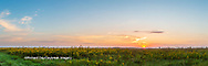 63893-03916 Sunrise over prairie Prairie Ridge State Natural Area  Marion Co. IL