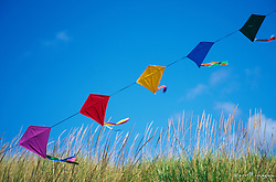 North America, USA, Washington, Long Beach. Kites on the beach