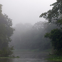 Morning fog hovers above the Yanayacu River in Peru's Amazon Jungle.