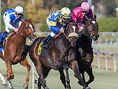 Horse Racing: Hollywood Park Horse Racing