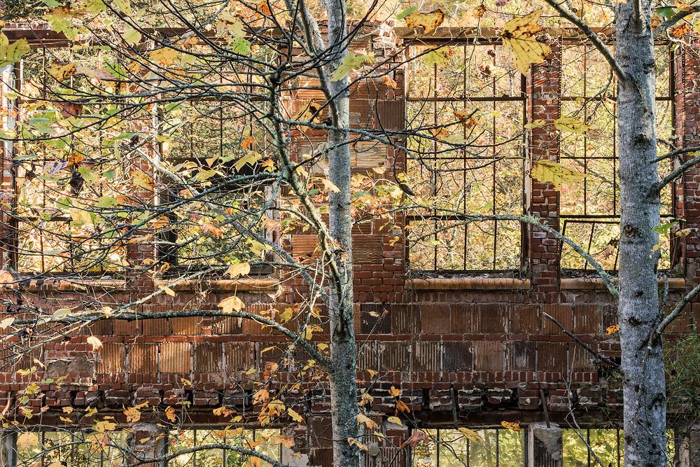 Coalwood, McDowell County, West Virginia 20.10.21