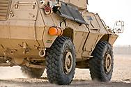 2228 MP Louisiana  National Guard on base in Basra Iraq.