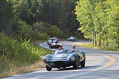 106 1955 Jaguar D-Type