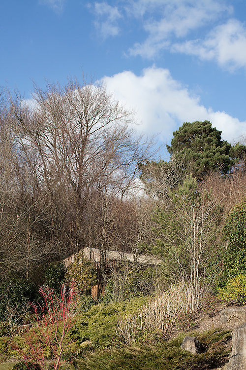 ecospace studios. sussex hideaway. garden room. wood.