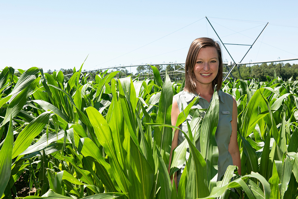 Casey Cox is the sixth generation of her family to farm along the Flint River in Camilla, Georgia, Mitchell county. The Longleaf Ridge Farms grows field corn (seen here), sweet corn, soybeans, timber and peanuts.