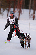 Photo Randy Vanderveen.Grande Prairie , Alberta.13-01-05.Ken Bernard urges his dogs through the race course as he takes part in the skijor event ? dogs pull the musher around the course on skis as opposed to a sled. The Grande Prairie Sled Dog Derby ran two days of races at Evergreen Park this past weekend, Jan. 5 and 6.