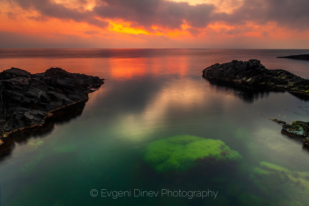 Rock with green seaweeds under the sea at sunrise
