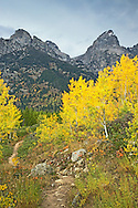 """Hiking Trail, Grand Tetons, Autumn Color, Grand Teton National Park<br /> <br /> For production prints or stock photos click the Purchase Print/License Photo Button in upper Right; for Fine Art """"Custom Prints"""" contact Daryl - 208-709-3250 or dh@greater-yellowstone.com"""