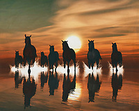 Horses in the sunset by the sea This painting easily brings the atmosphere of the sea to your home. This coastal scene can be printed in different sizes and on different materials. Both on canvas, wood, metal or framed so it certainly fits into your interior. –<br /> -<br /> BUY THIS PRINT AT<br /> <br /> FINE ART AMERICA / PIXELS<br /> ENGLISH<br /> https://janke.pixels.com/featured/horse-at-sunset-4-jan-keteleer.html<br /> <br /> <br /> WADM / OH MY PRINTS<br /> DUTCH / FRENCH / GERMAN<br /> https://www.werkaandemuur.nl/nl/shopwerk/Paarden-bij-zonsondergang-in-zee/778310/132?mediumId=15&size=70x55<br /> –<br /> -