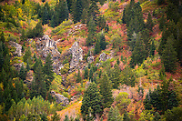 The hillside surrounding Snowbain ski resort in Northern Utah explode in the vibrant red, yellow, orange and green colors of Fall.
