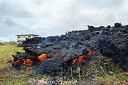 lava originating from Pu'u O'o on Kilauea Volcano, and emanating from a fissure in Leilani Estates, near Pahoa, Puna, Hawaii ( the Big Island ), Hawaiian Islands, U.S.A., enters a property off of Pohoiki Rd as a thick flow of a'a lava that pushed the house over then set it on fire