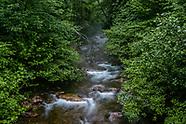 The Neighborhood - The Highlands at Rawley Springs