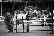 "07/08/1987<br /> 08/07/1987<br /> 07 August 1987<br /> Bank of Irelands Nations Cup for the Aga Khan trophy competition. Captain John Ledingham (Ireland) on ""Gabhran""."