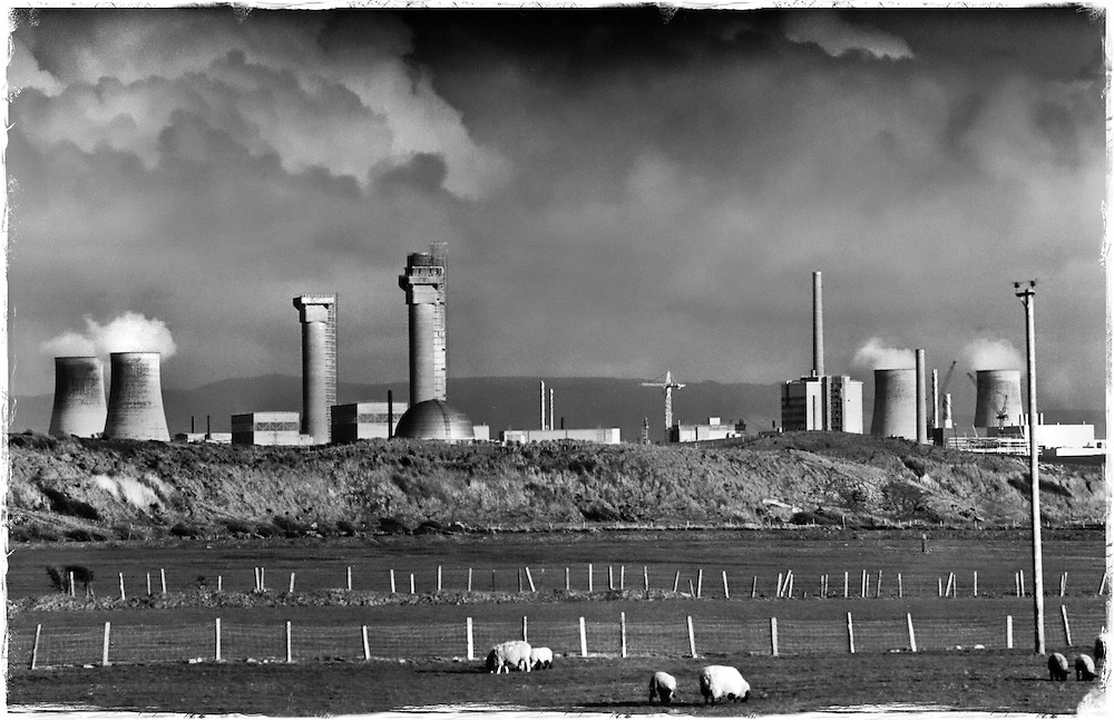 View of Sellafield showing stacks and chimneys with a field full of sheep in the foreground.<br /> The Prototype AGR nuclear reactor (domed shaped building) is just visible. <br /> Sellafield, nuclear fuel reprocessing and nuclear decommissioning site, Cumbria, UK, 1990's.