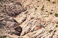 Black Dragon Canyon of the San Rafael Reef of the San Rafael Swell, Utah, USA